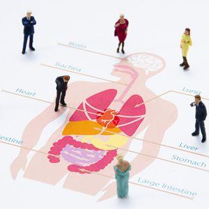 医療系3DCGを依頼する際のポイント